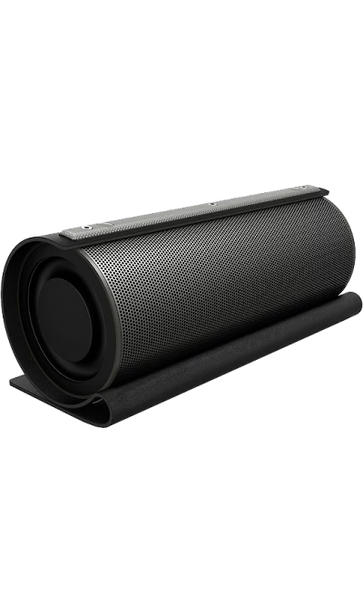 GZ Колонка  electronics LoftSound -22 Black (Черная)