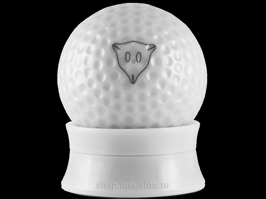 Управляемый мяч Woddon iConGolf